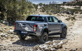 Picture grey, shore, vegetation, the descent, Ford, Raptor, pickup, Ranger, 2019