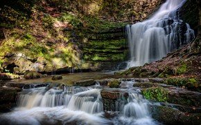 Picture forest, leaves, rock, stones, England, waterfall, moss, cascade, County Durham