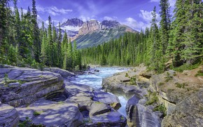 Picture forest, the sky, mountains, river, day