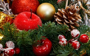 Picture frost, balls, branches, berries, holiday, balls, Apple, fruit, Christmas, New year, tree, bump, needles, Christmas …