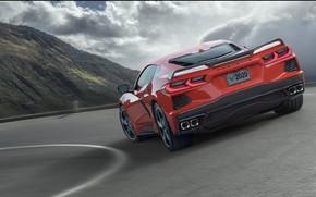 Picture Road, Corvette, Chevrolet, Speed, Stingray, 2020, Cook, Chevrolet Corvette ( C8 ) Stingray