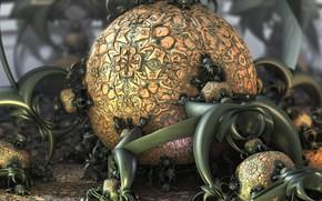 Wallpaper digital art, fractal art, fractal art, mysterious fruit