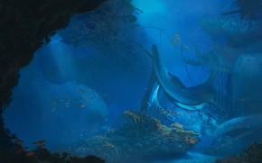 Picture Water, The ocean, Sea, The crash, Ship, Fish, The bottom, Fish, Fish, Water, Ocean, Sea, …