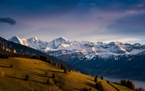 Picture forest, snow, mountains, tops, Alps, houses