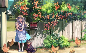 Picture cat, flowers, village, girl, chickens