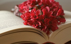 Picture flowers, leaves, book
