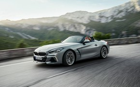 Picture grey, speed, BMW, the fence, Roadster, mountain road, BMW Z4, M40i, Z4, 2019, G29