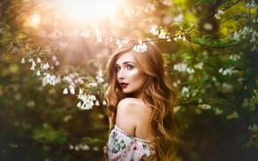 Picture look, girl, light, nature, hair, spring, garden, beautiful, flowering, Melanie Dietze, Theresa Franke