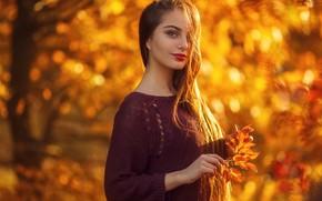 Picture autumn, Park, model, portrait, brown hair, beauty, bokeh, Poly, Sergey Sorokin, Sergey Sorokin
