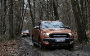 Picture road, forest, trees, Ford, dirt, pickup, dampness, Ranger, Wildtrak