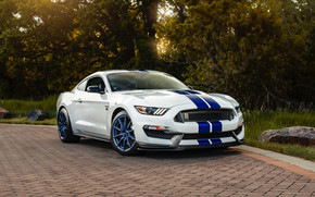 Picture road, machine, white, lights, mustang, sports car, ford, side view, wheel, Shelby GT350, Ford mustang …