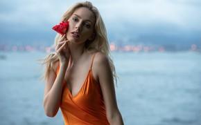Picture flower, look, girl, face, model, hair, beautiful, bokeh, John Simon