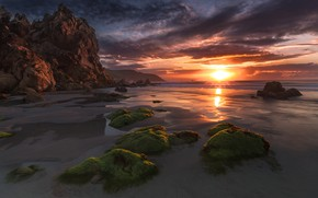 Picture sand, sea, beach, the sun, clouds, rays, light, algae, sunset, clouds, stones, rocks, shore, coast, …