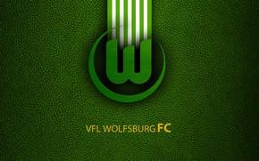 Picture wallpaper, sport, logo, football, Bundesliga, VFL Wolfsburg