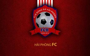 Picture wallpaper, sport, logo, football, Hai Phong