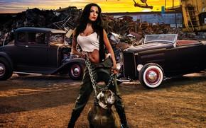 Picture look, dog, beautiful girl, Devushki, posing against old car