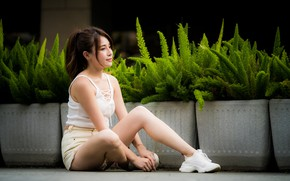 Picture girl, shorts, Mike, legs, Asian, sitting