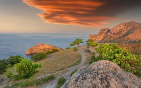 Picture sea, landscape, sunset, nature, stones, rocks, shore, vegetation, track, path, Crimea, New Light, Vladimir Ryabkov