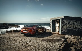 Picture shore, coupe, BMW, Coupe, 2018, 8-Series, dark orange, M850i xDrive, Eight, G15, the toilet