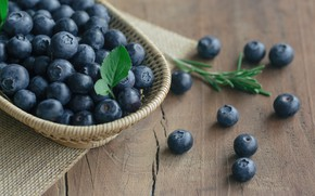Wallpaper berries, blueberries, fresh, wood, blueberry, blueberries, berries