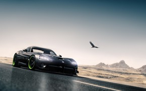 Picture Auto, Black, Bird, Machine, Dodge, Viper, Dodge Viper, Sports car, SRT Viper, Blind Sarathonux, by …