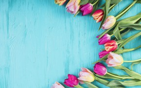 Picture flowers, colorful, tulips, pink, wood, pink, flowers, tulips, spring, purple