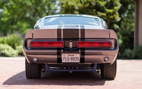 Picture Mustang, Ford, Shelby, Eleanor, Ford Mustang, 1967, GT500E, 1967 Ford Mustang GT500E Shelby Eleanor