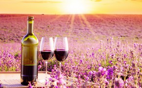 Wallpaper field, the sky, the sun, rays, landscape, flowers, wine, bottle, horizon, glasses, table, lavender, bokeh