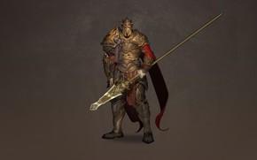 Picture Art, Background, Illustration, Knight, Minimalism, Armor, Warlord, Spear, Dzhovanna Sallama, Partisan