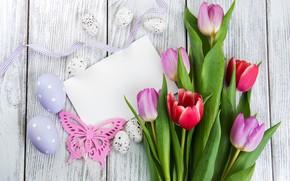 Picture bouquet, Easter, tulips, composition, Olena Rudo
