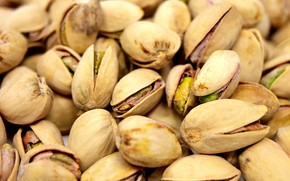 Picture nuts, a lot, Pistachios
