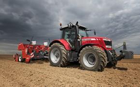 Picture field, tractor, Massey Ferguson