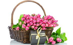 Picture gift, basket, spring, tulips, pink, March 8, beautiful