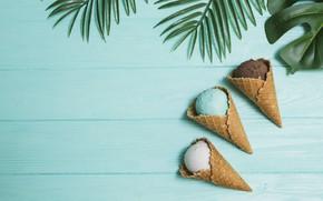 Picture ice cream, dessert, leaves, chocolate, vanilla, ice-creams