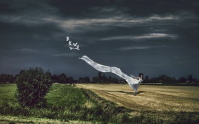 Picture field, the sky, girl, birds, nature, pose, the wind