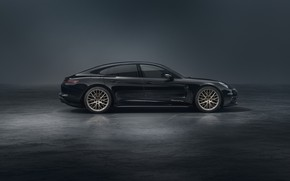 Picture Porsche, Panamera, side view, 2019, 10 Year Edition