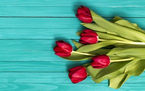Picture flowers, bouquet, tulips, red, red, flowers, tulips, spring