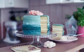 Picture blue, rose, plate, cake, decoration, dessert, cakes, piece of cake
