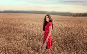 Picture field, girl, nature, hat, dress, brunette, ears, Victoria Dubrovskaya