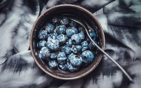 Picture wallpaper, plate, food, macro, spoon, berries, breakfast, milk, blueberries, 4k ultra hd background