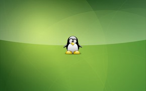 Picture green, linux, Tux