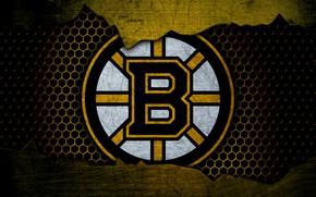 Picture wallpaper, sport, logo, NHL, hockey, Boston Bruins