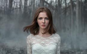 Picture freckles, sponge, Albert Forest, Kate Tokareva