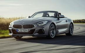 Picture the sky, grass, asphalt, grey, BMW, Roadster, BMW Z4, M40i, Z4, 2019, G29