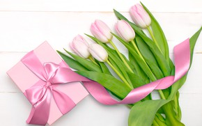 Picture white, background, holiday, gift, Wallpaper, tape, tulips