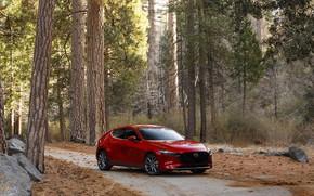 Picture photo, Mazda, Car, Hatchback, Mazda3, 2020, Skyactiv-G