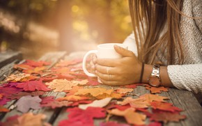 Picture autumn, leaves, girl, Park, colorful, Cup, girl, maple, wood, park, background, autumn, leaves, cup, coffee, …