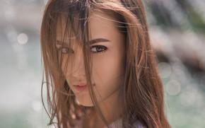 Picture girl, long hair, brown hair, brown eyes, photo, photographer, model, bokeh, lips, face, brunette, portrait, …
