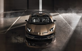 Picture machine, light, lights, smoke, Lamborghini, gate, sports car, boxes, roadster, Aventador, SVJ