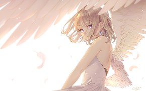 Picture look, wings, angel, ""